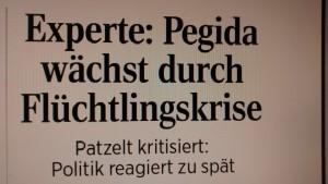 Patzelt_LVZ